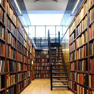 Библиотеки Нижней Туры